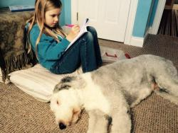 A lovely way to do maths, on the floor with the dog!
