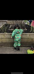 Musgrave vegetable garden